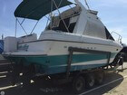 1993 Bayliner 3058 Ciera Command Bridge - #2