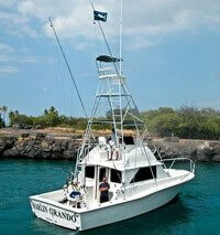 Bertram 38 - 2007 Engine and Rebuild, 37', for sale - $425,000