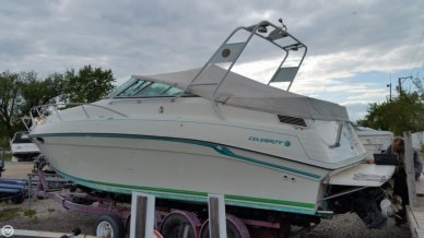 Celebrity 29 Sport Cruiser, 29', for sale - $18,500