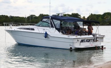 Sea Ray 460 Express Cruiser, 51', for sale - $45,000