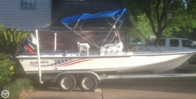 Blue Wave 220 Deluxe Pro, 22', for sale - $20,000