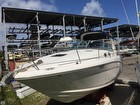 2006 Sea Ray 300 Sundancer - #2