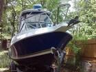 2002 Aquasport 250 Explorer - #5