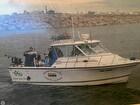 2005 Baha Cruisers 299 Sportfish - #5