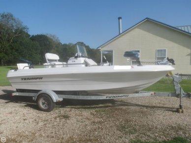 Triumph 190 Bay, 18', for sale - $17,500