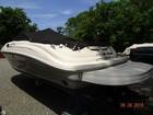 2008 Sea Ray 240 Sun Deck - #5