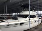 1982 Sea Ray 355AC - #2