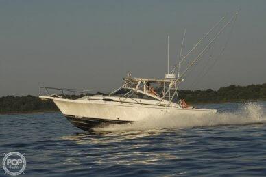 Blackfin Blackfin 29 Combi, 29, for sale