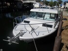 Bow Rail, Fiberglass Hard Top, Windlass, Navigation Lights, Anchor
