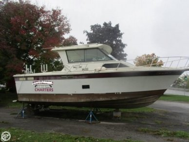 Baha Cruisers 310 Sport Fisherman, 310, for sale - $12,000