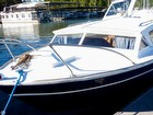 1972 Chris-Craft Catalina 281 - #2