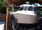 2009 Baha Cruisers 252GLE - #5
