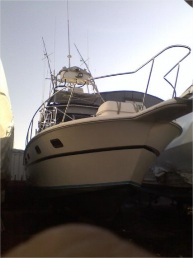 Aquasport 290 Tournament Master, 290, for sale - $50,000