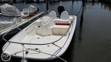 Boston Whaler 17'