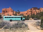 2001 Thomas School Bus - #2