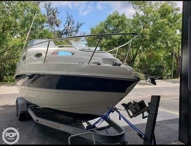 Stingray 250 CS, 250, for sale - $29,900