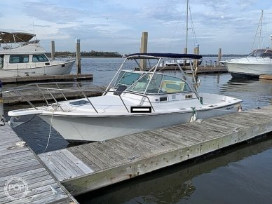 Shamrock 22 Predator, 22, for sale - $11,000