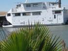 2008 Custom Built Catamaran - #5