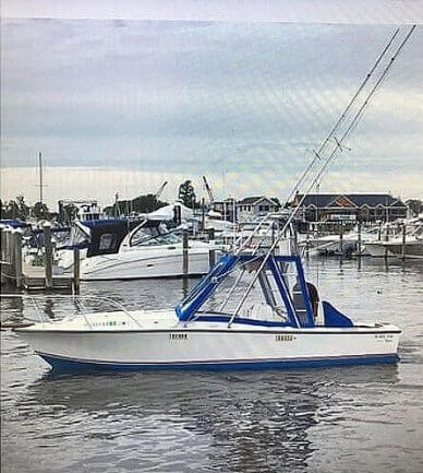 Blackfin 25, 25, for sale - $29,000