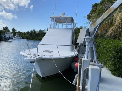 Bow View