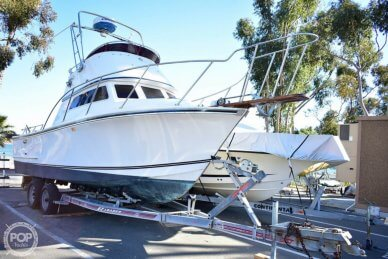 Champion 26 Fish Hunter (Blackman), 26, for sale - $49,500