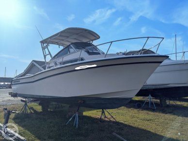 Bow Starboard Side View