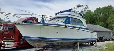 Bertram 33, 33, for sale - $20,000