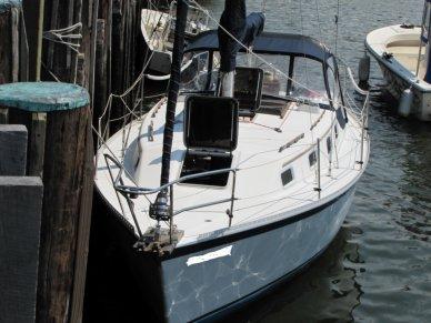 Watkins Sea Wolf 30, 30', for sale - $20,500
