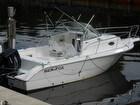 2004 Sea Fox 210 - #2