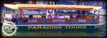 Delhi Glass Bottom Tour Boat, 31', for sale - $45,000