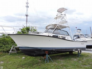 Rampage 31, 31', for sale - $19,900