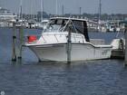 2007 Baha Cruisers 257 WAC - #2