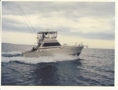Viking 40, 40', for sale - $74,900